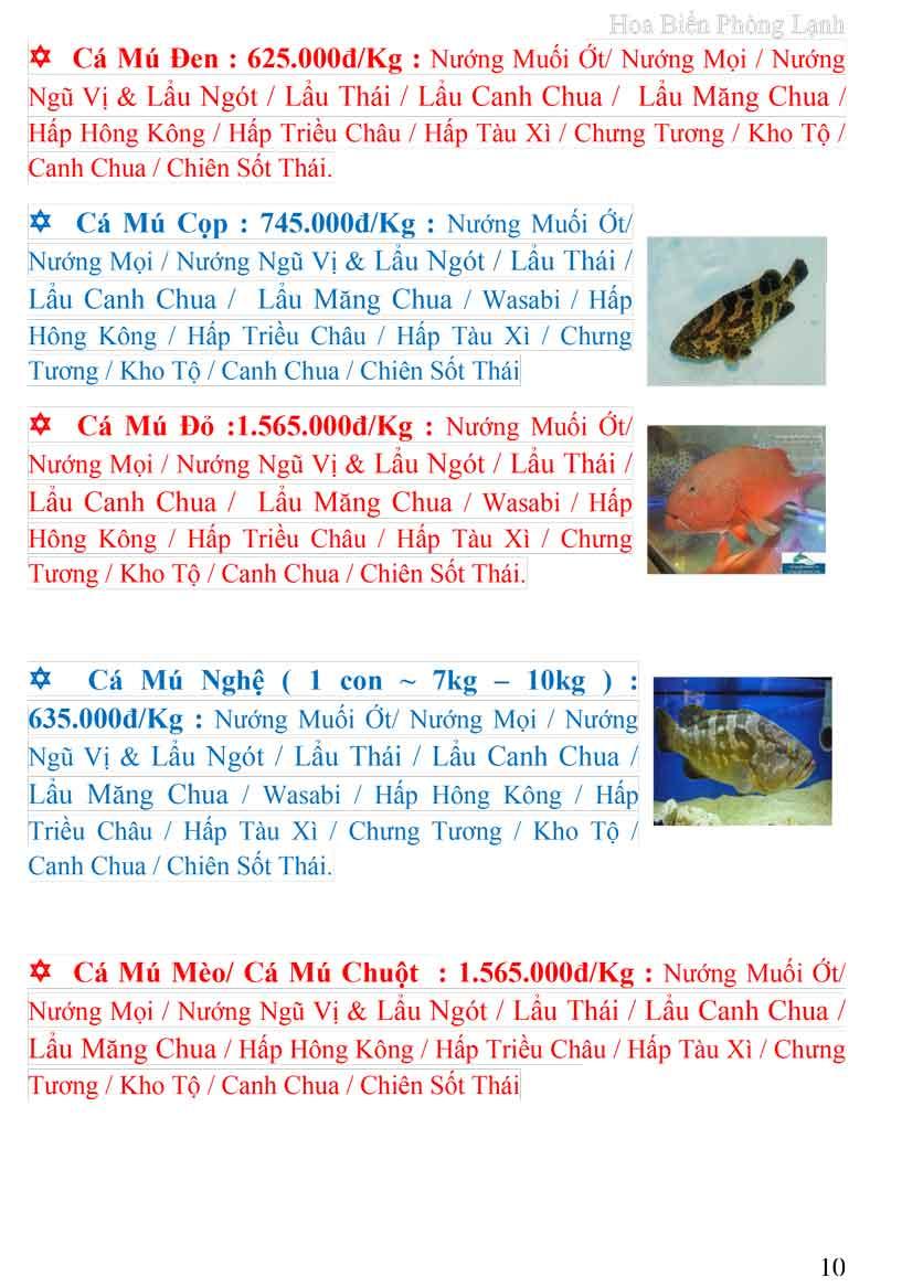 Menu Hoa Biển (Đông Dương cũ) 9