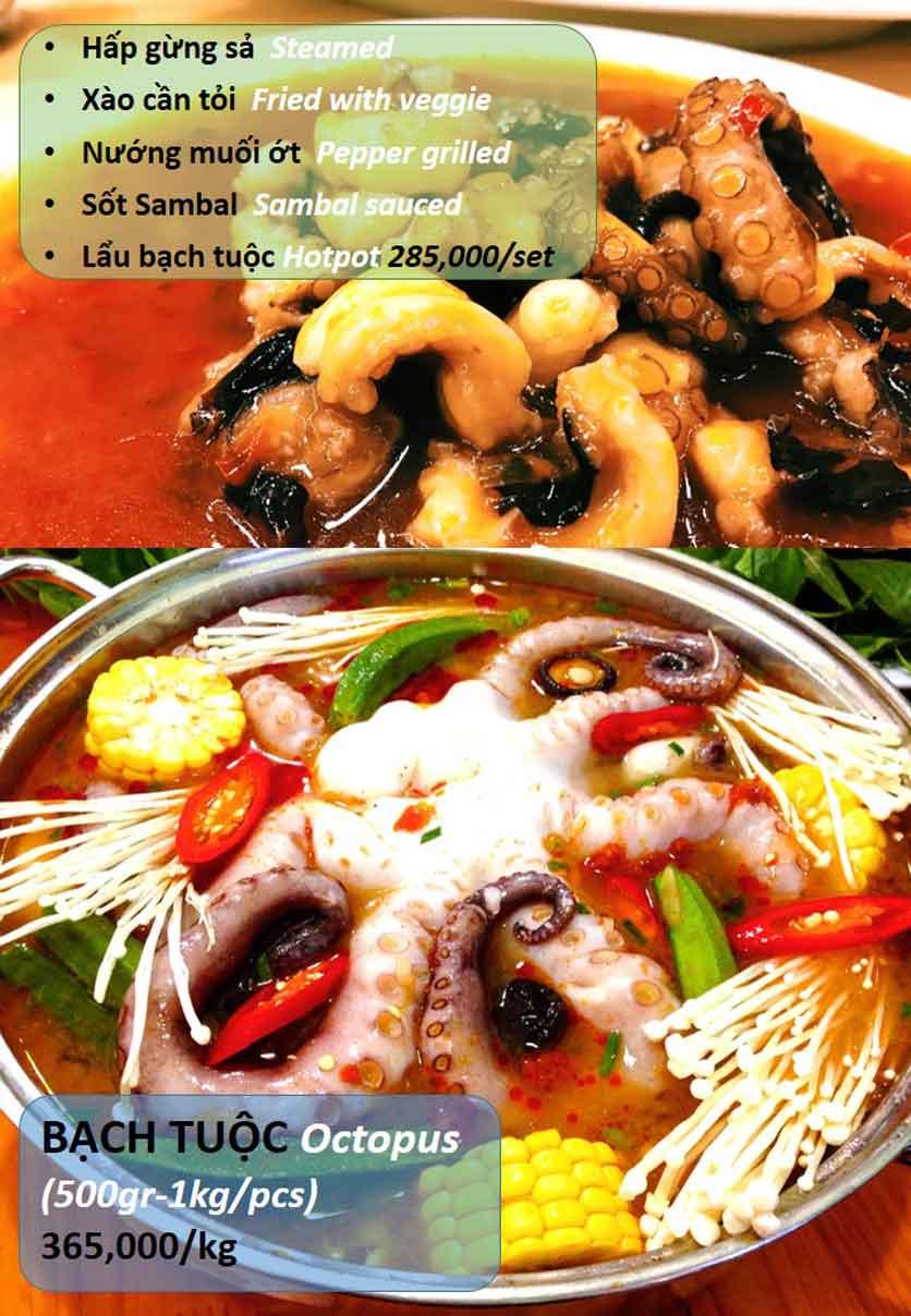 Menu Hải Sản Tomato - Lê Văn Hưu  12