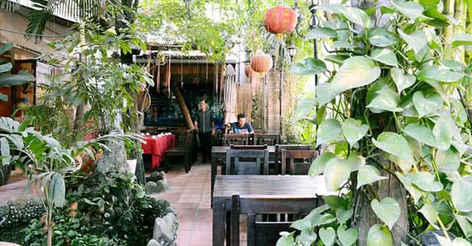 Đi Tìm Góc Vườn Quê Xanh Mướt Trên Phố Cafe Sài Gòn