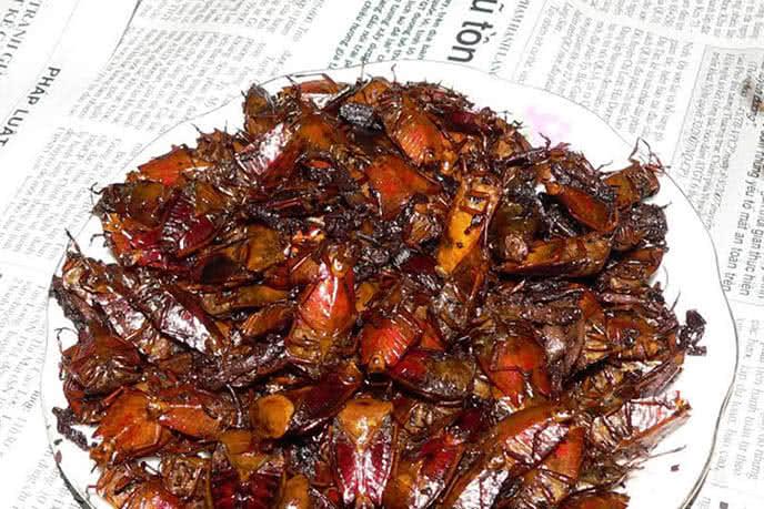 Top những món ăn kinh dị nhất thế giới ở Hà Nội ảnh 12