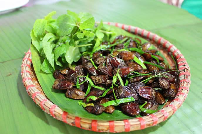 Top những món ăn kinh dị nhất thế giới ở Hà Nội ảnh 13