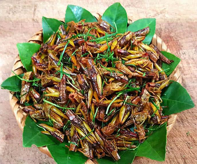 Top những món ăn kinh dị nhất thế giới ở Hà Nội ảnh 9