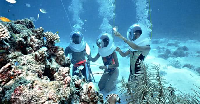 """2 tour du lịch biển mới lạ độc đáo """"đi bộ dưới biển"""" ảnh 2"""