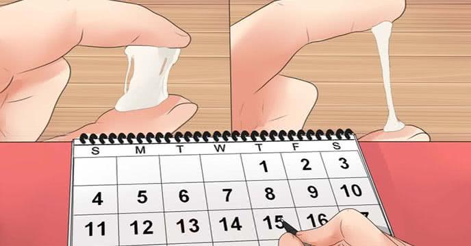 Cách tính ngày rụng trứng canh con gái chuẩn 99% ảnh 1