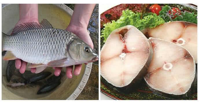 Chọn cá tươi sống thì món ăn sẽ ngon hơn