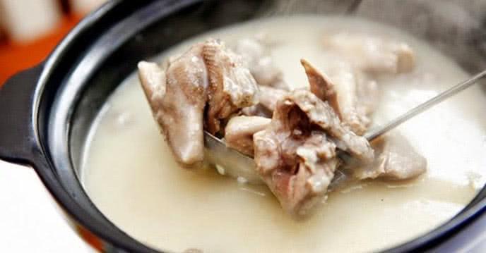 Bật mí cách nấu cháo chim bồ câu cực bổ dưỡng 2