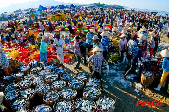 nghịch lý về guồn hải sản việt nam lỗi do ai 7